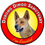 Durong Dingo Sanctuary